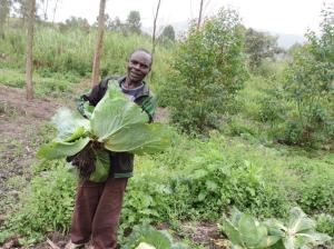 Bulindi Adolphe with his cabbage