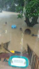 floods 3